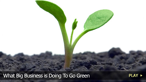 What Big Business is Doing To Go Green