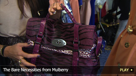 The Queen of Mulberry Accessories - The Alexa Bag