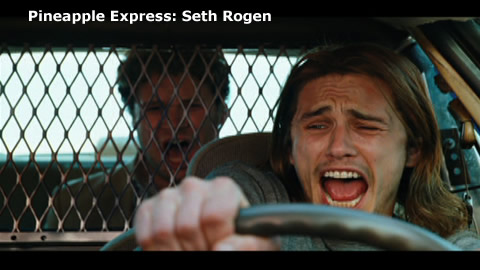 Pineapple Express: Seth Rogen