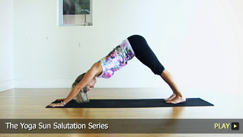The Yoga Sun Salutation Series
