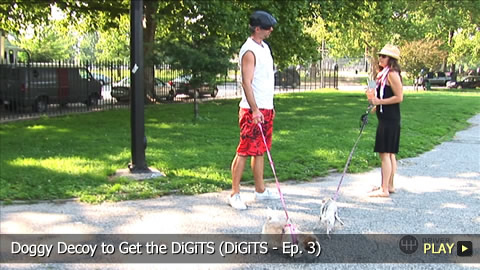 Doggy Decoy to Get the DiGiTS (DiGiTS - Ep. 3)