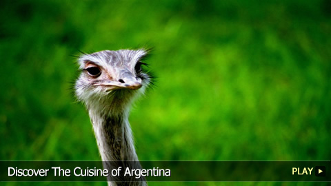 Discover The Cuisine of Argentina