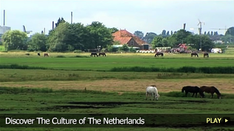 Discover The Culture of The Netherlands
