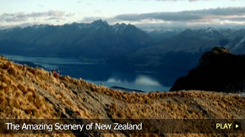 Discover The Amazing Scenery of New Zealand