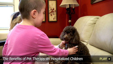 The Benefits of Pet Therapy on Hospitalized Children