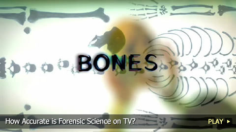 How Accurate is Forensic Science on TV?
