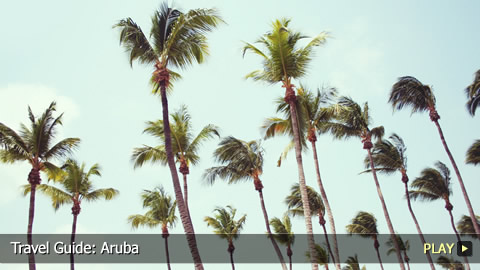 Travel Guide: Aruba