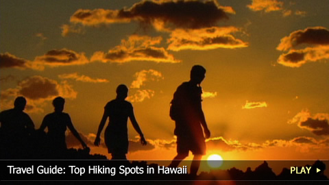 Travel Guide: Top Hiking Spots in Hawaii