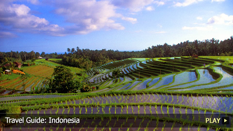 Travel Guide: Indonesia