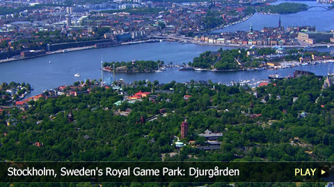 Stockholm, Sweden's Royal Game Park: Djurgrden