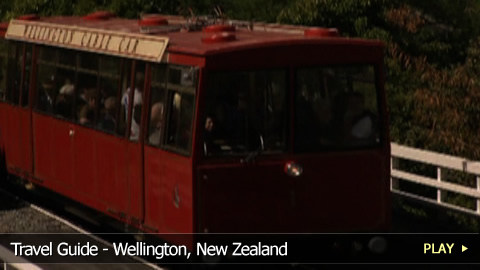 Travel Guide - Wellington, New Zealand