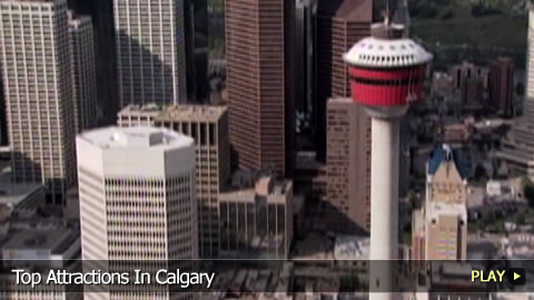Top Attractions In Calgary
