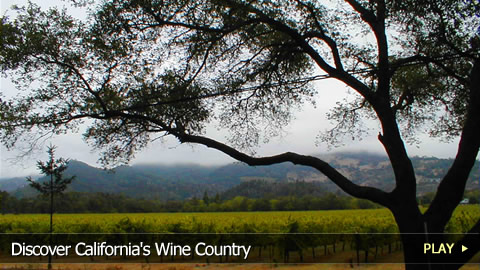 Discover California's Wine Country 