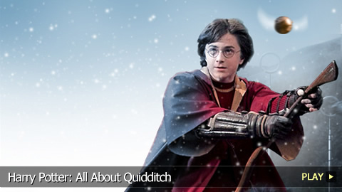 Harry Potter: All About Quidditch