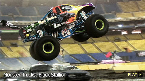 Monster Trucks: Black Stallion