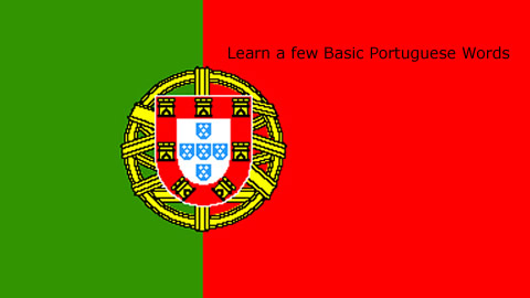 Language Translation Portuguese: You are Welcomed