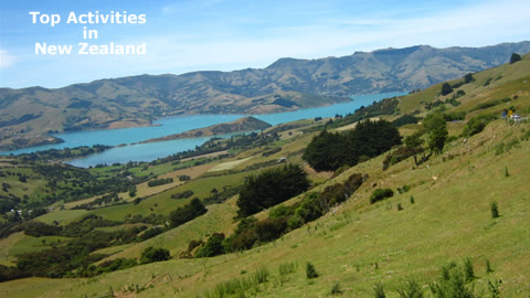 Top Activities in New Zealand