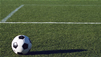 The Technology Of Artificial Turf