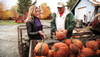 Pumpkin Carving: How to Pick a Pumpkin or Squash